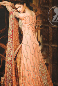 Peach Back Trail Maxi Banarsi Sharara