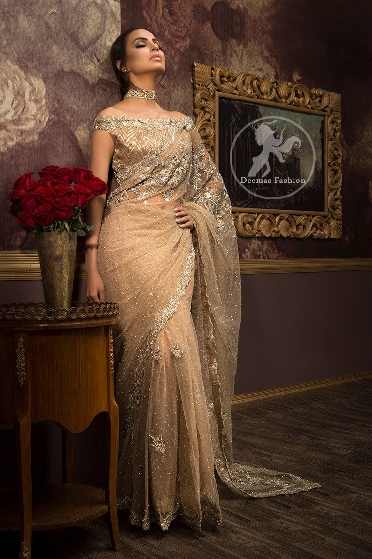 Light Brown Party Wear - Saree Jamawar Blouse