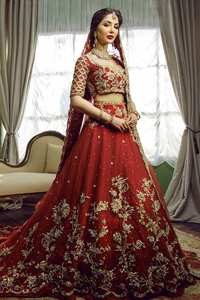 Red Back Train Lehenga Blouse – Dupatta