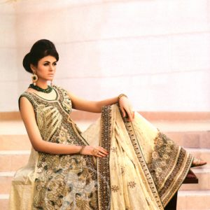 Light Fawn Front Open A Line Gown Lehnga