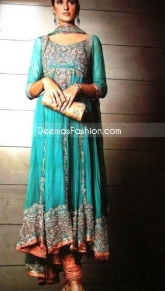 Rust Seagreen Kali Style Heavy Embroidered Border Pure Chiffon Frock
